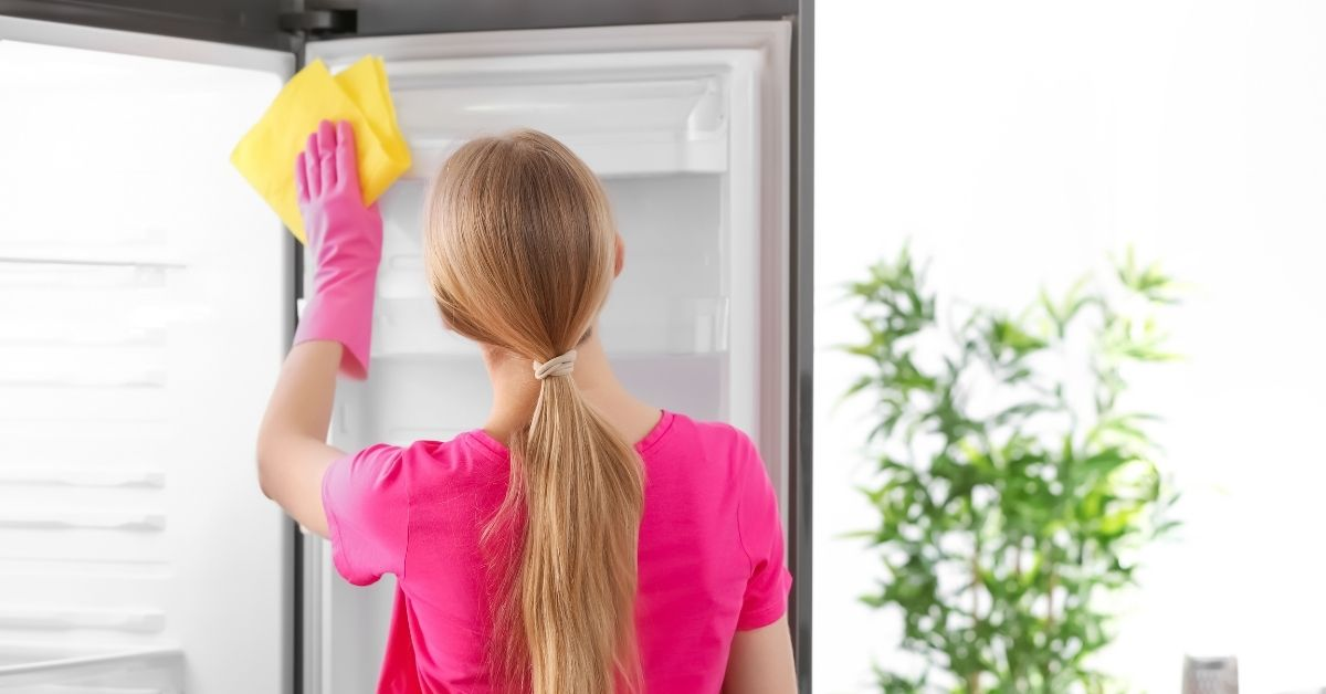 Woman Cleaning a Fridge - What to Clean a Refrigerator With - Clean and Tidy Living