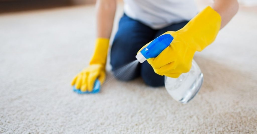 Woman Cleaning and Getting Sick out of a carpet - Clean and Tidy Living