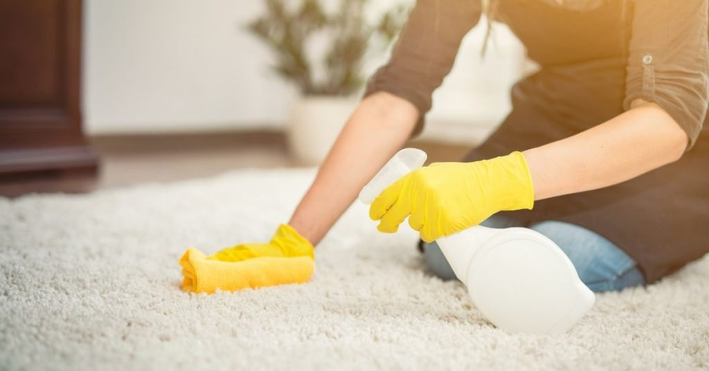 Woman Cleaning and Getting Sick out of a carpet with cleaning product and cloth - Clean and Tidy Living