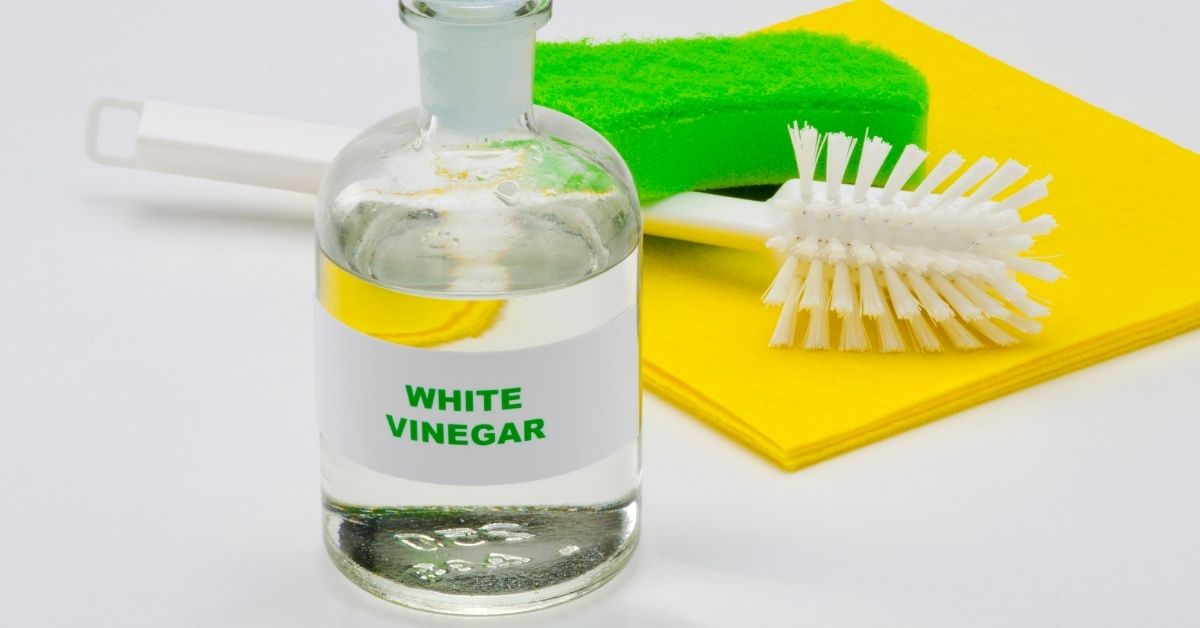 Where to buy white vinegar - Clean and Tidy Living