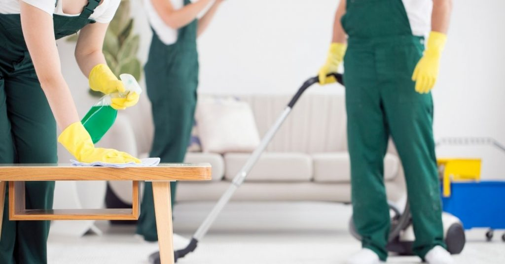 Domestic cleaner - how much do cleaners charge per hour - Clean and Tidy Living