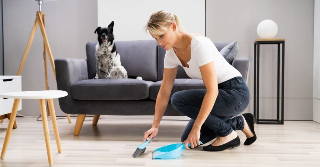 How to Clean your house in 2 hours - Clean and Tidy Living