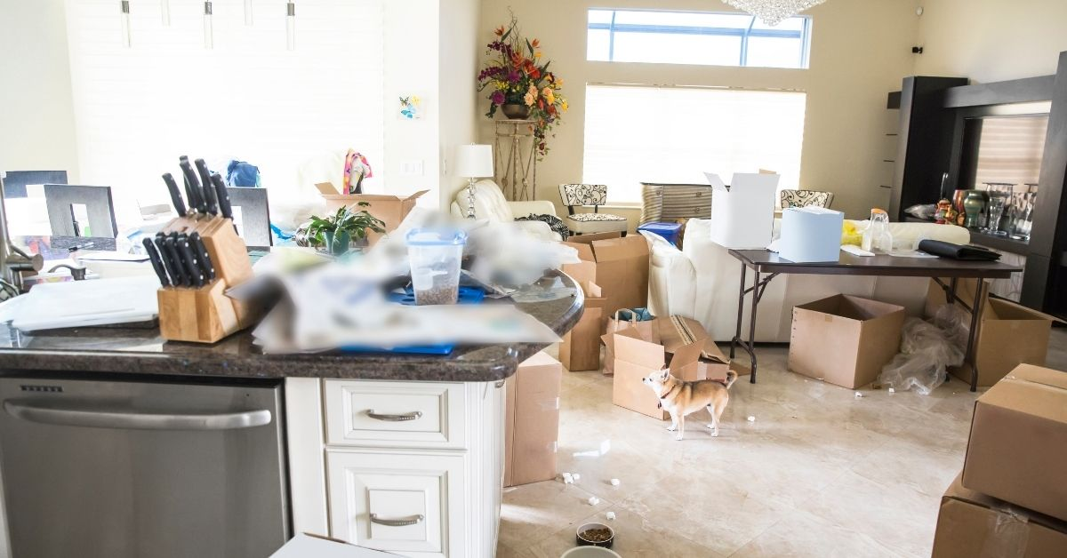 Messy House - WHAT CAUSES SOMEONE TO NOT CLEAN THEIR HOUSE Clean and Tidy Living